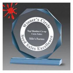 ACRYLIC BEVELED OCTAGON AWARD