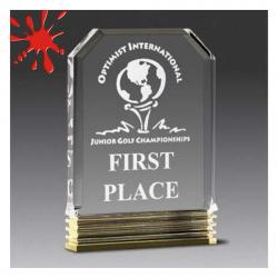 ACRYLIC DIAMOND CARVED AWARD