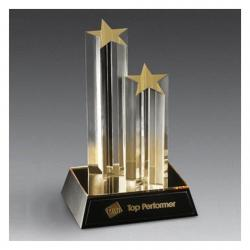 ACRYLIC DOUBLE STAR AWARD
