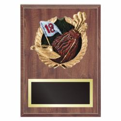 GOLF PLAQUE WITH RESIN RELIEF