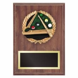 BILLIARDS PLAQUE WITH RESIN RELIEF