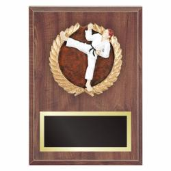 KARATE PLAQUE WITH RESIN RELIEF