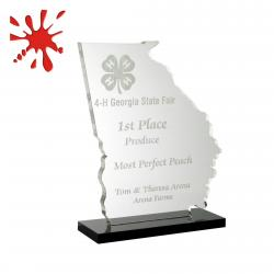 STATE OF GEORGIA ACRYLIC AWARD