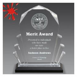 FACETED IMPRESS ACRYLIC AWARD