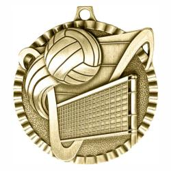 VOLLEYBALL V SERIES MEDAL